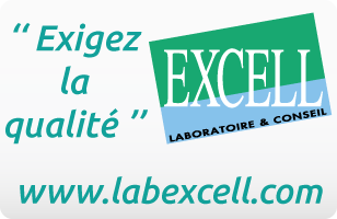 illustration Site web du Laboratoire Excell